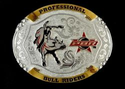 Ref: 2109 - Fivela Country Master PBR
